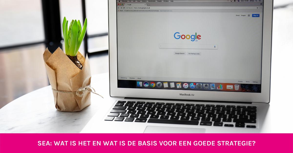 google laptop plant
