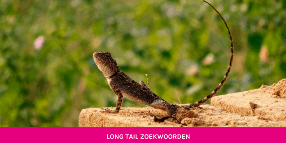 Getbright - long tail zoekwoorden blog