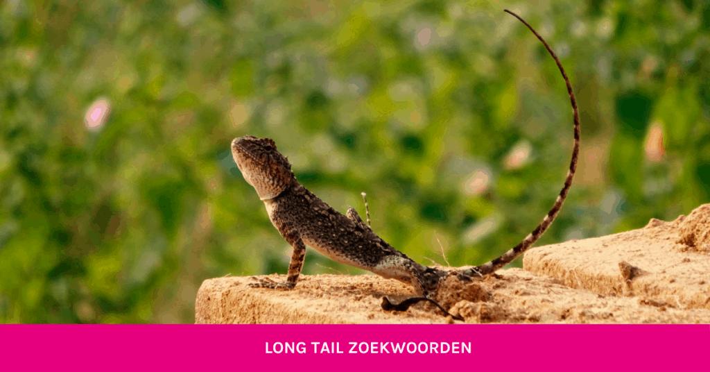 Getbright - long tail zoekwoorden blog