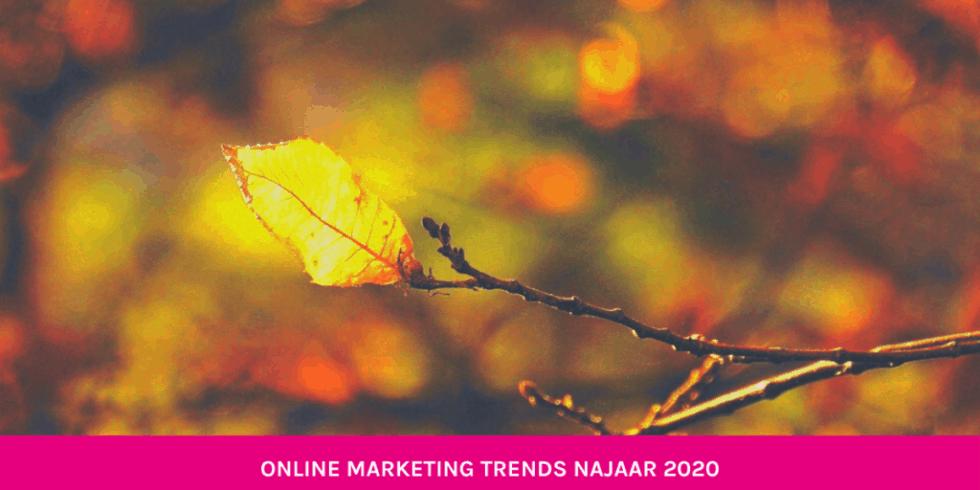 online marketing trends najaar 2020 blog