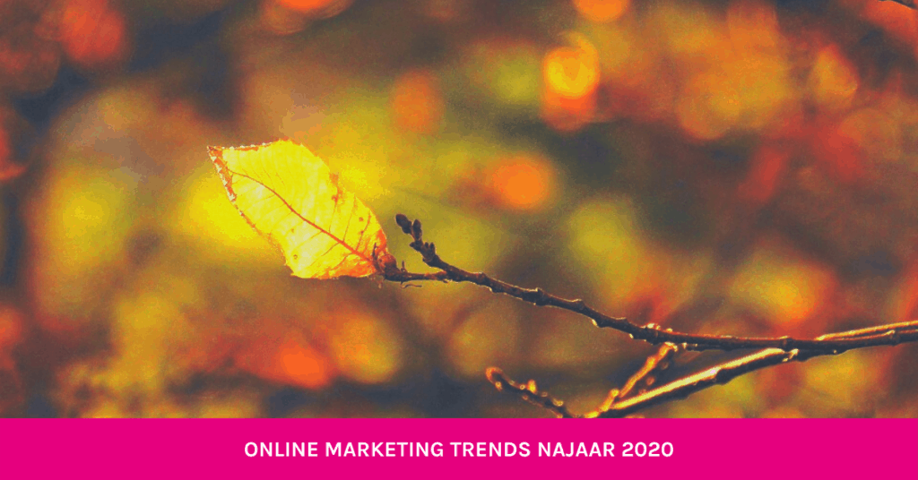 online marketing trends najaar 2020 blog